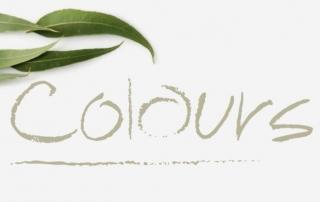 COLORBOND® Roof Colours
